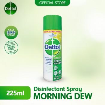 Dettol Disinfectant Spray 225ml Morning Dew